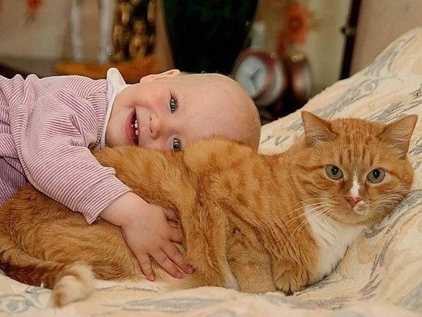 домашние животные и новорожденные дети